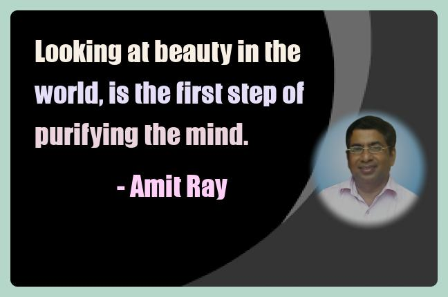 Amit Ray Meditation Quotes - Looking at beauty in the world, is
